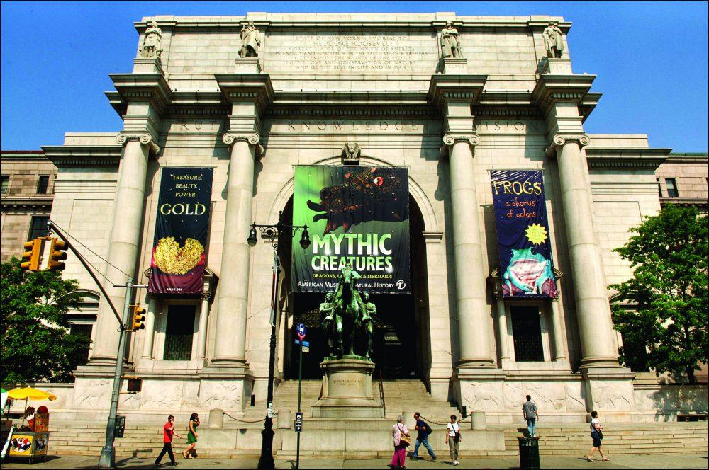 Natural History Museum di New York